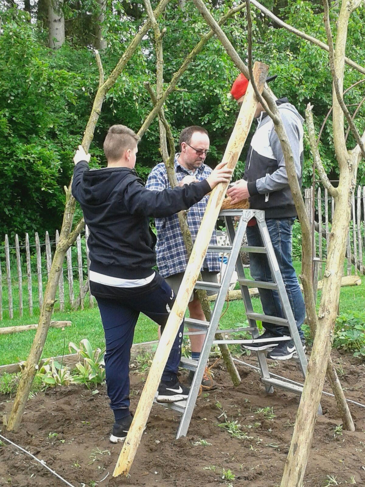 Kletterhilfe für Stangenbohnen