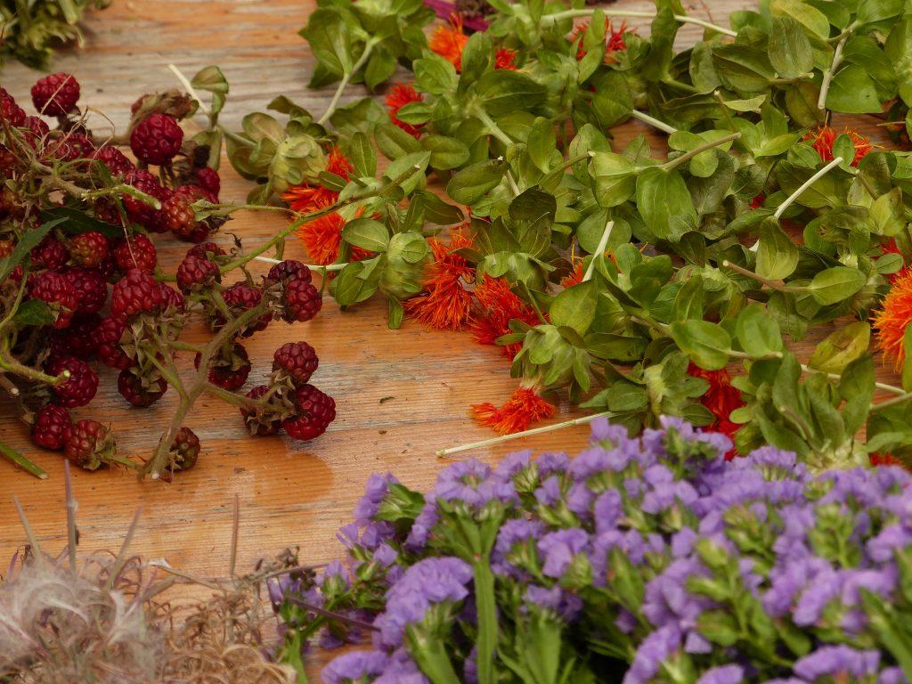 Zutaten für den Herbstkranz