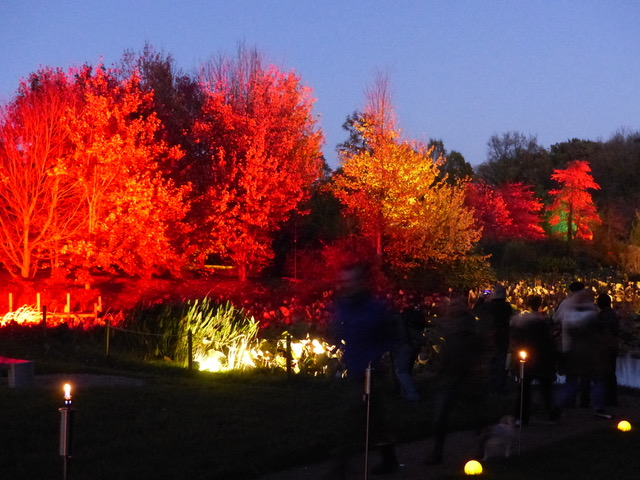 Herbstfest in Ellerhoop